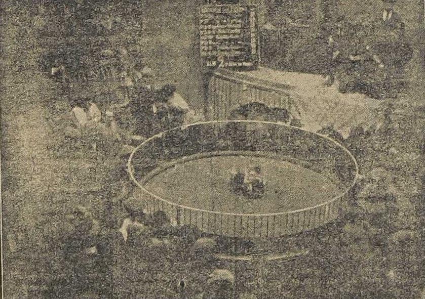 19140314001 - copia