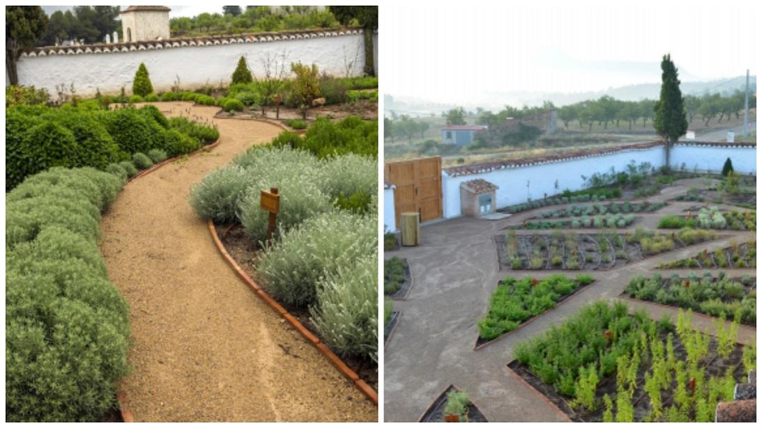 Antiguo cementerio de Aras de los Olmos, hoy convertido en  jardín botánico de Aras de los Olmos.
